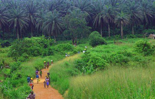 Rural scene in Sierra Leone